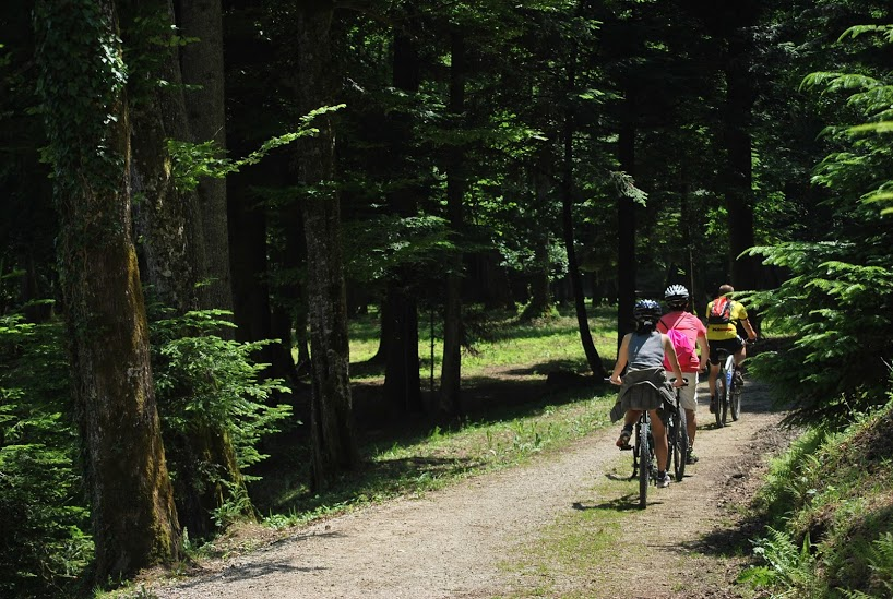 Cycling, biking, Mreznica, Mreznica river, bike tour, activities, Croatia